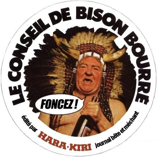 http://a401.idata.over-blog.com/0/25/35/10/Album/Conseil_de_Bison_Bourre.jpg